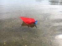 Papierboot mit Motor